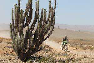 Paco Martinez en el desierto
