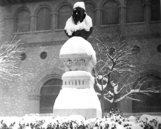 El monumento a Loscos, nevado, en la plaza de San Juan, donde fue colocado en 1891. Hoy se encuentra en el parque de los botánicos (jardincillos).
