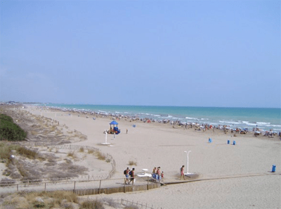 canet4_1