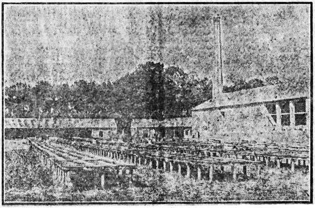 En 1925 –la foto es de dos años antes- la resinera del Carmen sufrió grandes desperfectos a causa de una tormenta (Heraldo de Madrid - Hemeroteca Digital del Ministerio de Cultura)