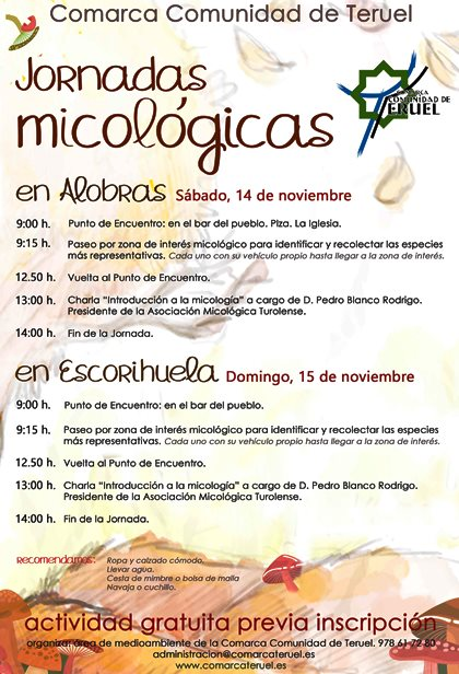 ComarcaTE_Jornada_ micologicas_Nov2015_web