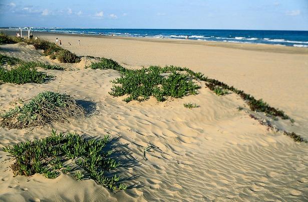 Una imagen de  la playa de Canet d'en Berenguer