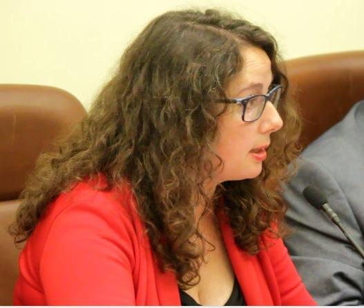 En la imagen , la diputada de Ganar Teruel, Anabel Gimeno en el Pleno de la DPT de esta mañana